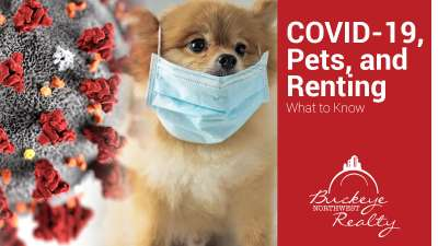 COVID-19, Pets, and Renting: What to Know