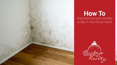 How to Keep Moisture and Humidity at Bay in Your Rental Home